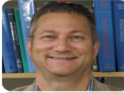 Mark D Distefano